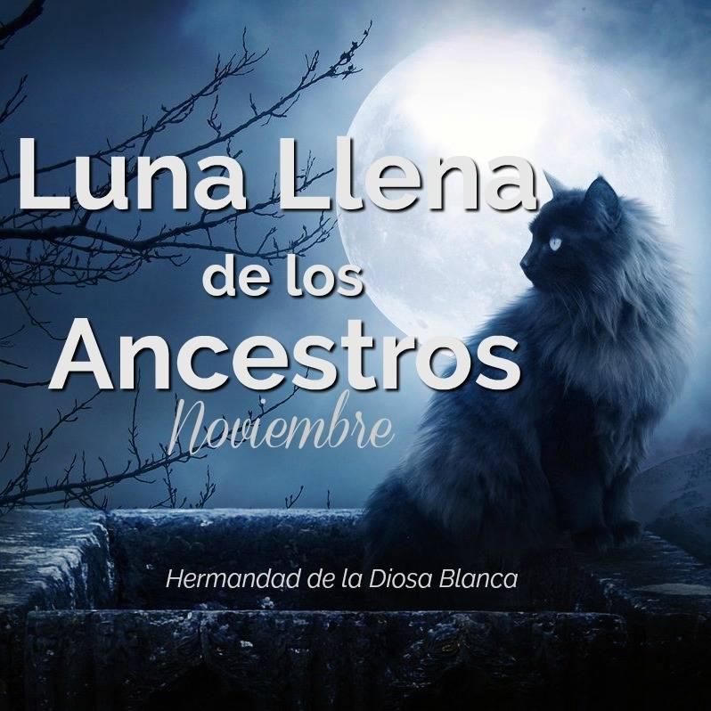 Luna Llena de Noviembre, Luna Llena del Castor, Luna llena de los ancestros
